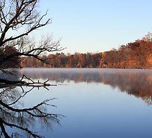 Oswego River in Fall by BrianFitePhoto