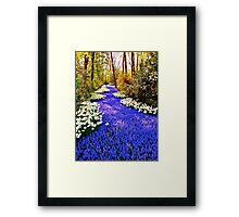 Spring Flowers in Holland ( Keukenhof ) Framed Print