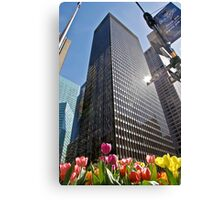 Tulips in New York Canvas Print
