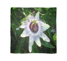 Beautiful Passion Flower With Garden Background Scarf