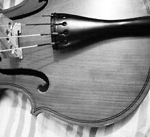 The Violin by nksran