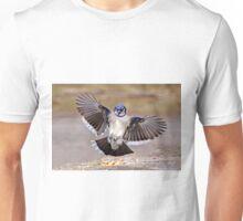 Blue Jay Lands T-Shirt