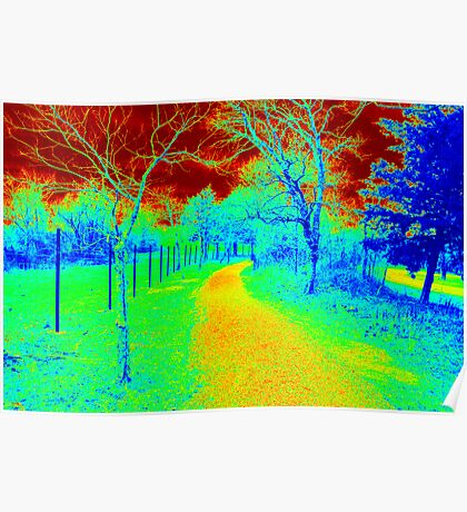 Heat Map Trail Poster
