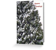 O Christmas Tree Greeting Card