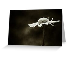 Toward your light, I grow Greeting Card