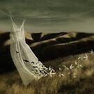 As free as a bird by Amanda  Cass