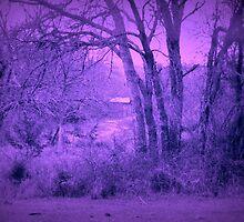 Old Barn Landscape at Dusk by Mickey Harkins