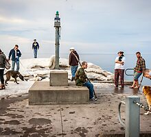 Hangout at the Light by Mikell Herrick