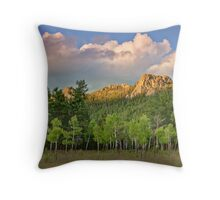 Remember The Summer Throw Pillow