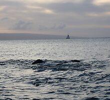 Sailing by Squidcake