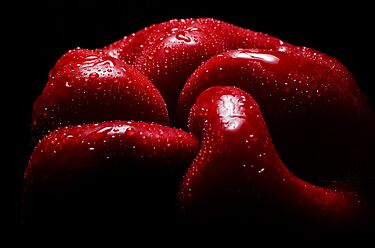 The red capsicum by ozzzywoman