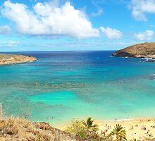 Hanauma Bay Hawaii by Adam Kuehl