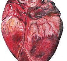 My Heart On My Tshirt by stephdrawsstuff