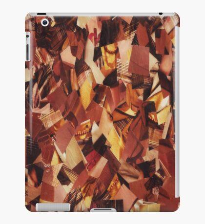 Warmth iPad Case/Skin