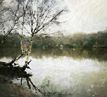 Wimbledon Common, London by Ludwig Wagner