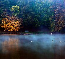 Norwegian lake by Balazs Kovacs
