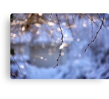 Snow dazzle Canvas Print