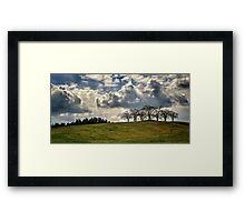 Woodland Trees Framed Print