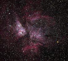 Carina Nebula by Stephen Permezel