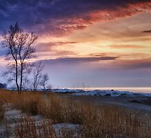 Beach At Sunset by Kathy Weaver