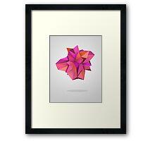 Pink Like Orange Framed Print