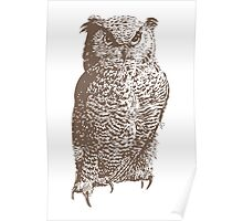 The Great Horned Owl (Bubo virginianus) Poster