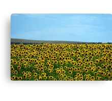 yellow army Canvas Print