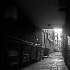 Wheelie Bin Alley by Andrew Pounder