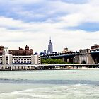 A View From Brooklyn by Danny Thomas