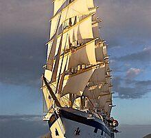 O' Beauteous ship! by Nancy Richard