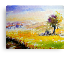 quiet alentejo.. Canvas Print