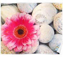 Pink flower and zen stone Poster