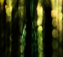 Bottle Bokeh by Carolann23