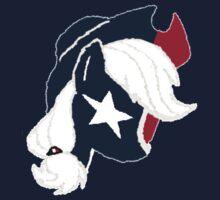 Applejack - Houston Texans by Karl Aria