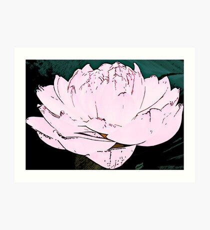 pink water lilly Art Print