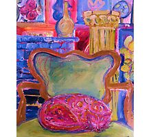 Pink Cat in Green Chair Photographic Print