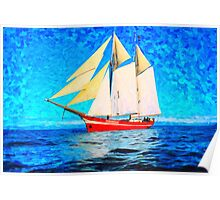 sailing in the cold waters  art Poster