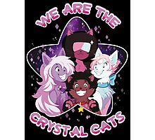 We are the Crystal Cats Photographic Print