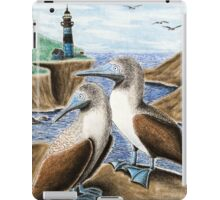 Blue-footed Booby iPad Case/Skin