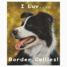 I luv Border Collies! by John Silver