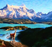 Torres del Paine National Park and the Llama, Chile by Adam Asar