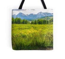 View Of The Grand Tetons Tote Bag