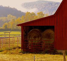 A Little Bit Country,  just as glimpse.... by NatureGreeting Cards ©ccwri