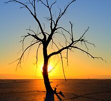 Magic At The Salton Sea 1 by Bob Christopher