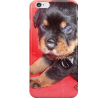 Cute Rottweiler Puppy With Food On Muzzle iPhone Case/Skin