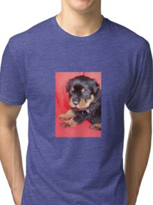 Cute Rottweiler Puppy With Food On Muzzle Tri-blend T-Shirt