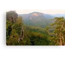 Jamison Valley panorama Canvas Print