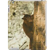Winter Squirrel iPad Case/Skin
