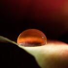 Fantasy Bubble by marina63