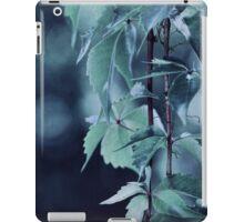 Indigo Evening iPad Case/Skin